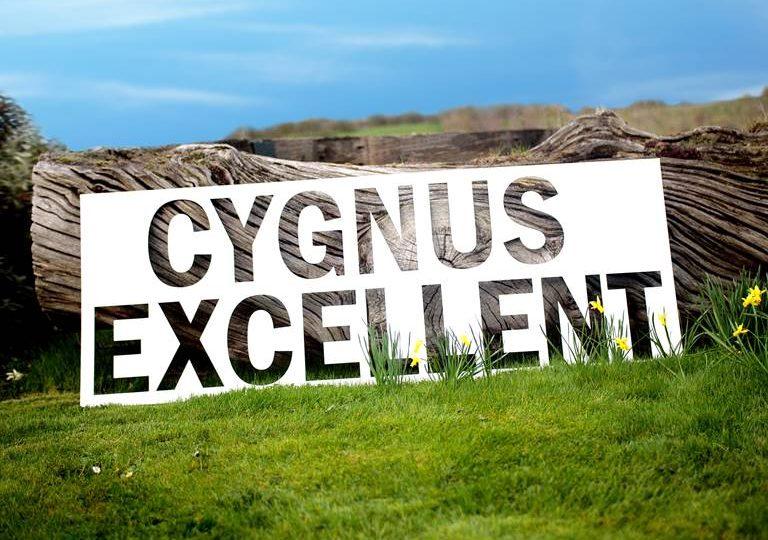 cygnus excellent