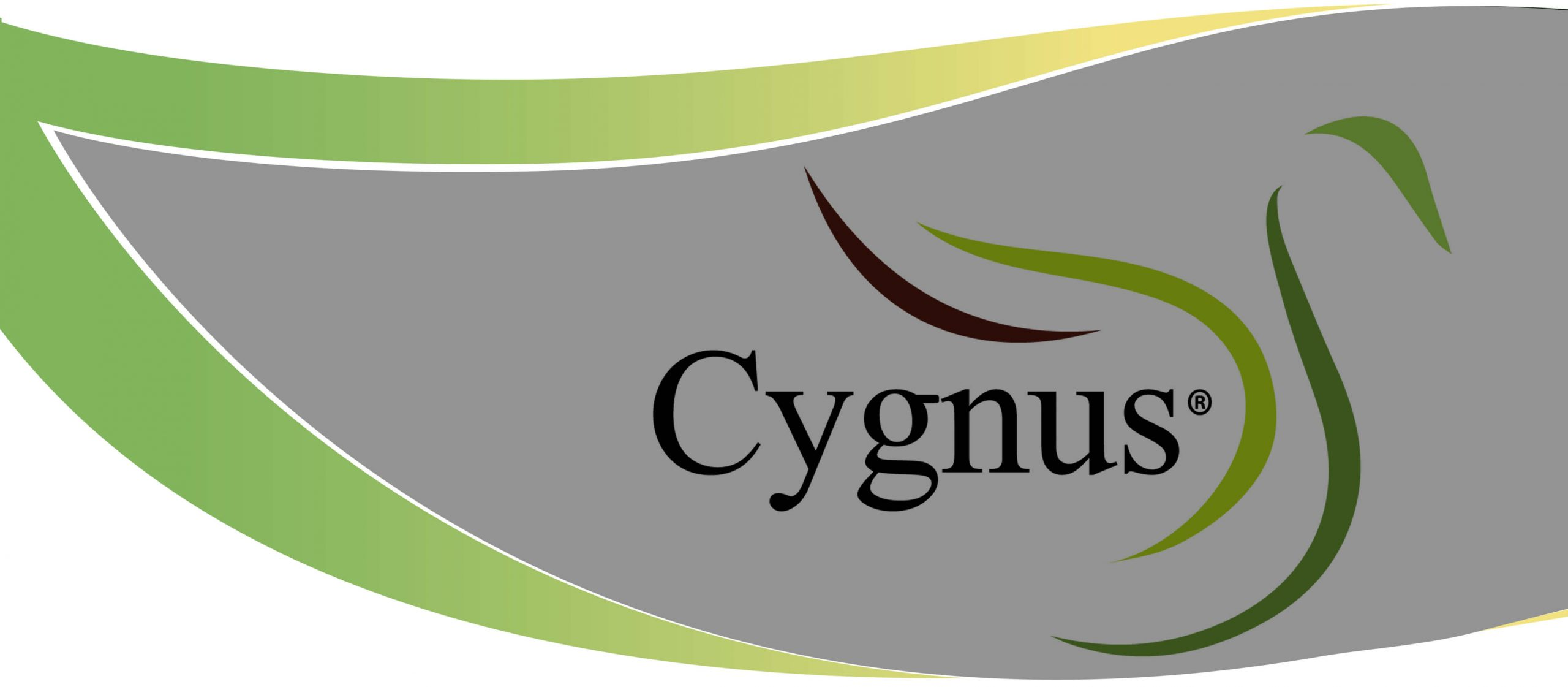 Home of the Cygnus®brand of materialsRead More